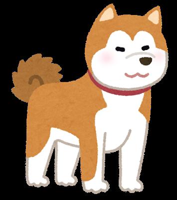 秋田犬.png
