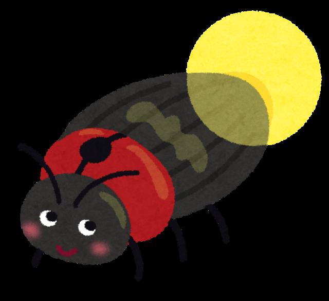 bug_hotaru.png